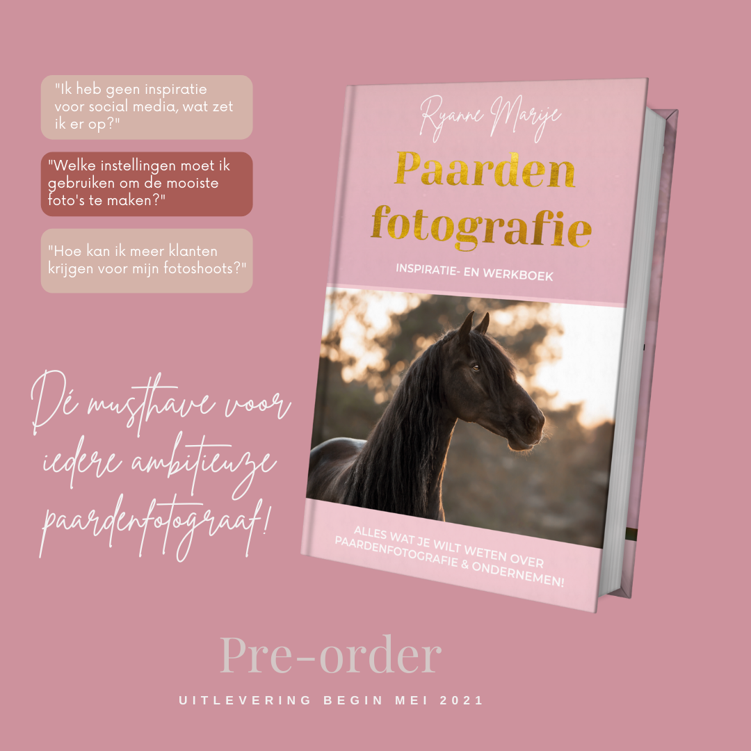paardenfotografie_inspiratieboek